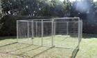 4.5m X 4.5m Pet Enclosure with Gate