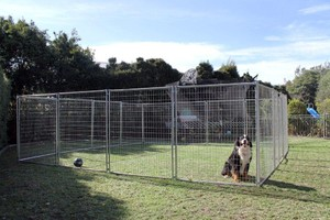 6m X 6m Pet Enclosure with Gate