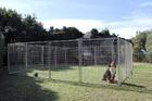 6m X 6m Pet Enclosure with Gate