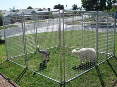 Spot On Pet Enclosures Test